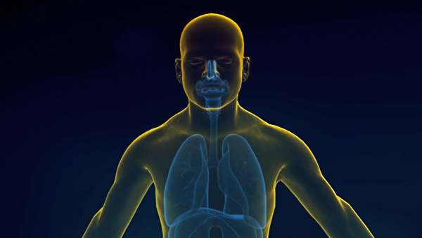 The Lung Foundation Australia – Better Living With Your Lung Disease Image for portfolio pic-